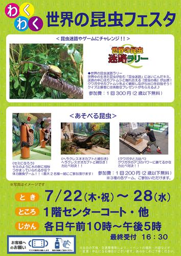 7/22(木・祝)~28(水) わくわく! 世界の昆虫フェスタ